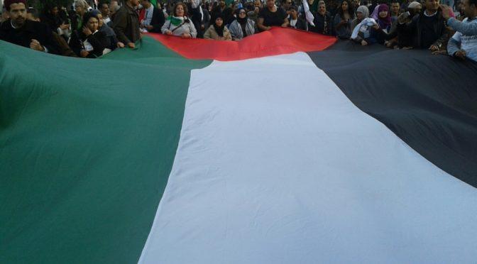 La RESCOP es solidaritza amb la resistència palestina al Fòrum Social Mundial de Tunísia.